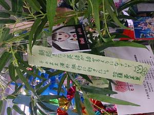 DSC_1472_1.jpg